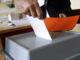 Primaires citoyennes : des bureaux de vote pour les Français à l'étranger