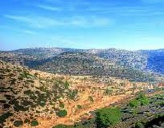 Tourisme : TYOUL EN SAMARIE – pour Tou Bichvat célebrons ensemble la terre d'Israel !!!!