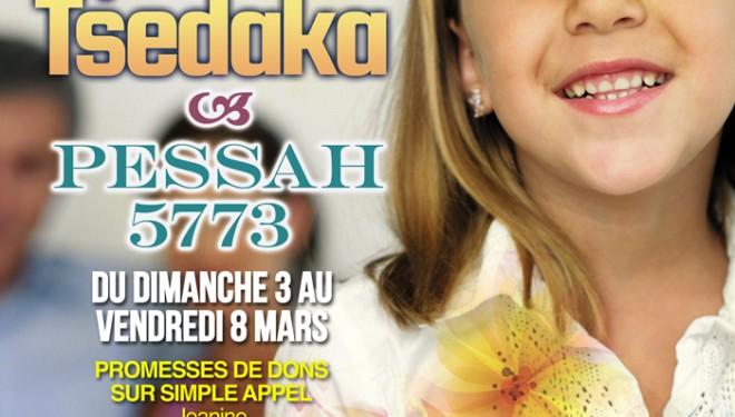 ADIR : Opération Tsedaka Pessah 5773