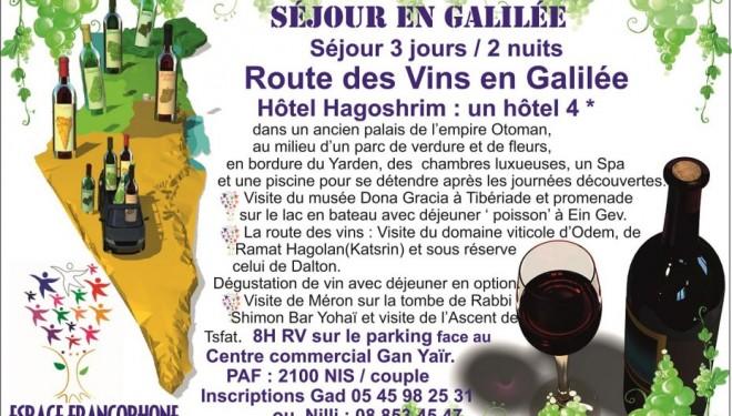 la route des vins en Galilée avec l'espace francophone