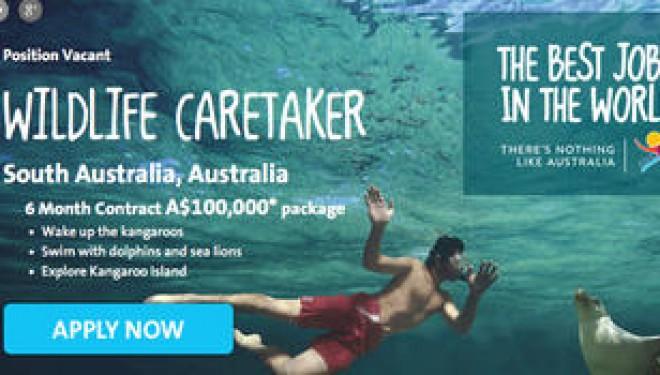 Des jobs de rêve à 13.000 euros par mois à décrocher en Australie !