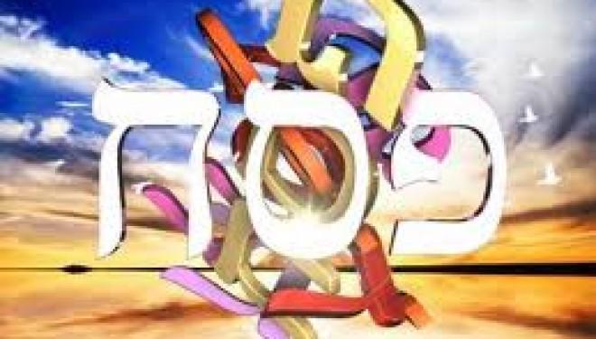 AMI Ashdod propose a vos enfants 6 jours de détente pour Pessah