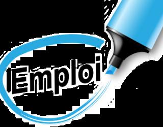 Société recrute deux chargés(es) de clientèle pour du matériel informatique