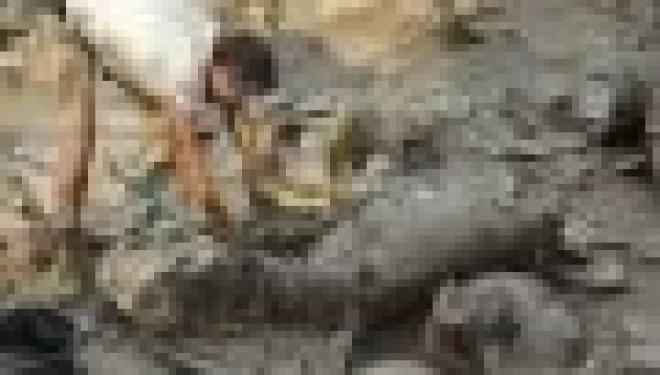 «La plus ancienne cave à vin du monde» découverte en Galilée