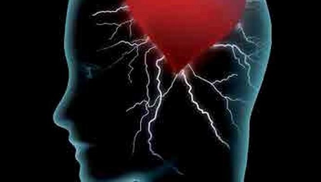 Conseils de Psy : apprendre à développer notre «intelligence émotionnelle» pour mieux vivre !