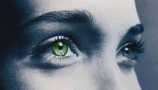 Une rétine artificielle pour rendre la vue aux non-voyants