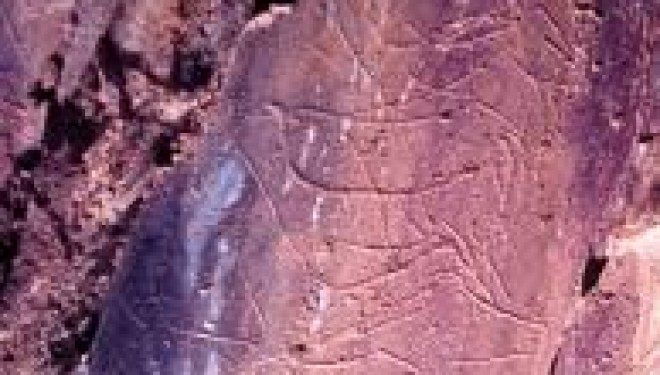 Israël : des trésors d'art rupestre cachés au public