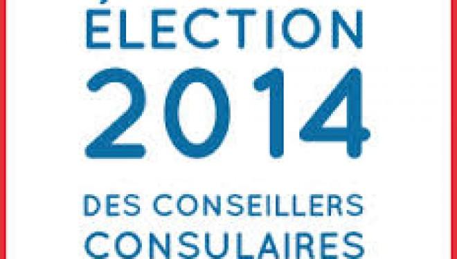 Elections consulaires : voter par Internet…