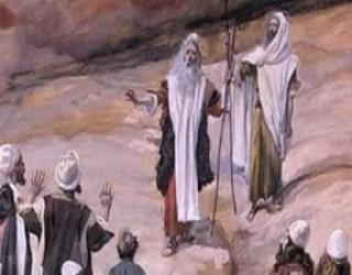 Paracha de la semaine :  Kora'h