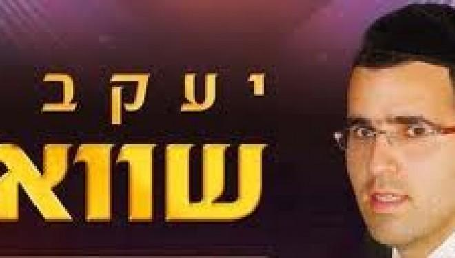 Musique : le nouveau clip de Yaakov Shweeky