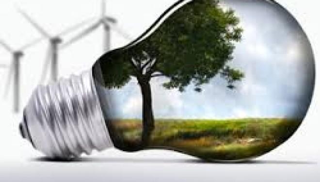 Le WWF classe Israël 1er pays au monde des cleantech