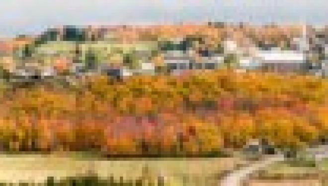Visitez le Mont Carmel avec Shavei Tsion