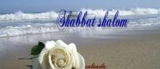 Toute l'Equipe d'Ashdodcafe et Businesscafe vous souhaite shabbat shalom !