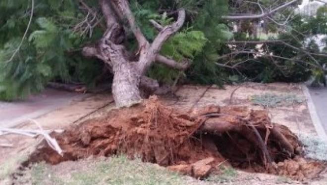 Ashdod : Pluie et vents violents, une tempête que l'on attendait pas
