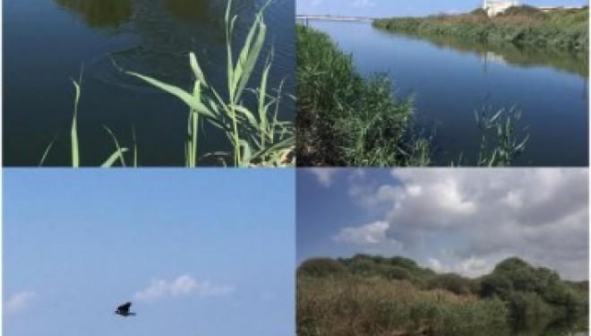 La rivière Lakhish retrouve son état naturel