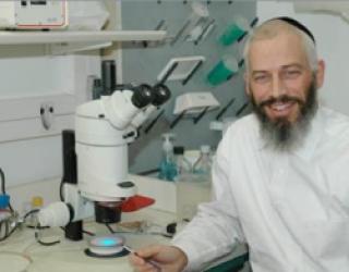 Gène Nup107, vers de nouveaux traitements de la stérilité