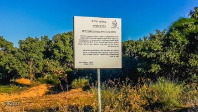 Le forum de l'environnement contre l'octroi d'un terrain de 45 hectares à l'université Sami Shamoun d'Ashdod