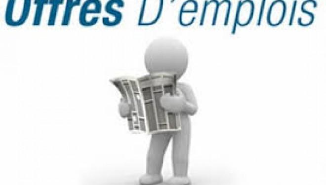 sociétés recherchent des enseignants francophones olim et un directeur de projet