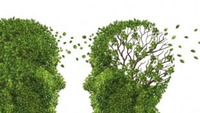 La maladie d'Alzheimer pourrait être diagnostiquée avec un simple test sanguin !!!