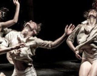 Venez au Mishkan découvrir les ballets modernes de grande qualité pour la saison 2016-2017