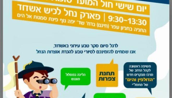 Le guide complet des activités de souccot a Ashdod et dans les environs