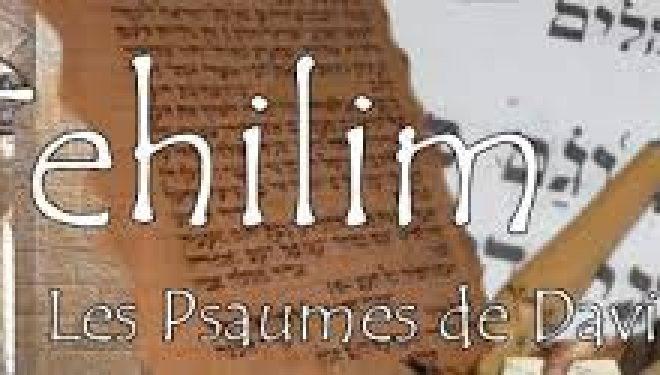 Introduction aux tehilim (psaumes)