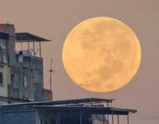 Avez vous vu ce 14 novembre la plus grande et la plus lumineuse »super lune» ?