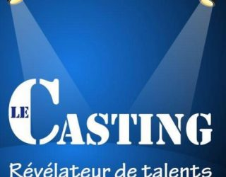 C'est parti pour le meilleur de l'humour français ! avec le CASTING fait son show !!!