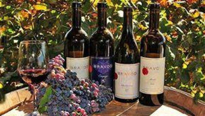 A 30 minutes en voiture d'Ashdod, dans le village de Karmei Yossef, se trouve un magnifique vignoble a découvrir !