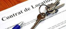 Israel : tout savoir sur les contrats de location, un projet de loi validé en 2 étapes