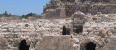 Ashkelon : les prochaines activités de l'association CFA