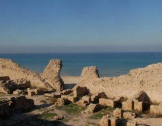Enfin un site destiné au tourisme avec Visitashdod….pour mieux connaitre Ashdod au travers de visites gratuites !