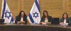 Le lobby francophone de la Knesset, une opportunité pour chacun d'entre nous de changer les choses !