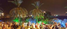 Ashdod, ville des saveurs avec le festival culinaire – galerie photos -13/14 septembre 2017