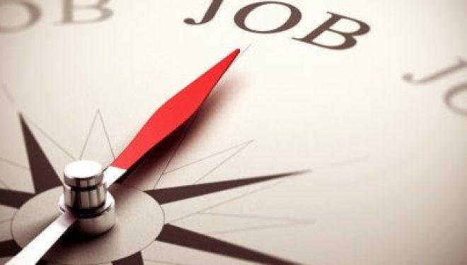 Offre d'emploi : société recherche un Designer contractor
