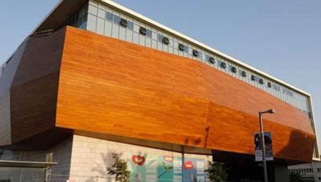 Allumons ensemble la deuxième bougie de Hanoukka  dans l'Arche de Noé du nouveau Musée Steinhardt….