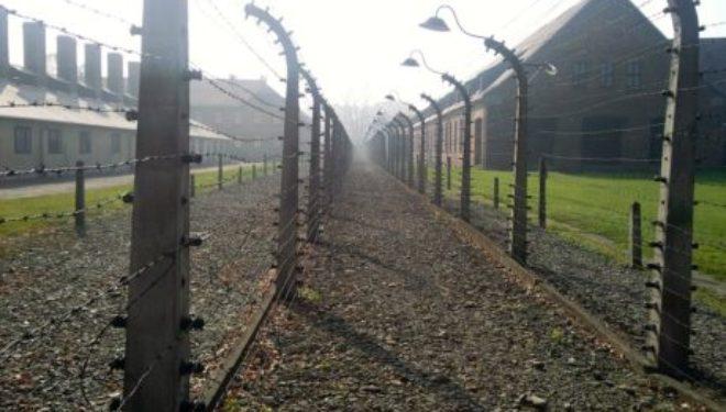 le 27 janvier est la journée de la mémoire de l'Holocauste et de la prévention des crimes contre l'humanité