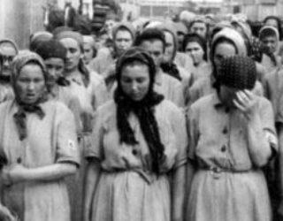Shoah : les juifs d'Algérie éligibles à des indemnités allemandes