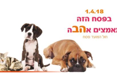 Ashdod : moi aussi je veux aussi une maison chaleureuse !!! Salon animalier avec de nombreuses animations pour enfants !