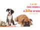 Ashdod : moi aussi je veux une maison chaleureuse !!! Salon animalier avec de nombreuses animations pour enfants !