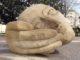 Psychologie et judaïsme : l'écoute comme aptitude par Hanna Lachkar Haddad, psychologue